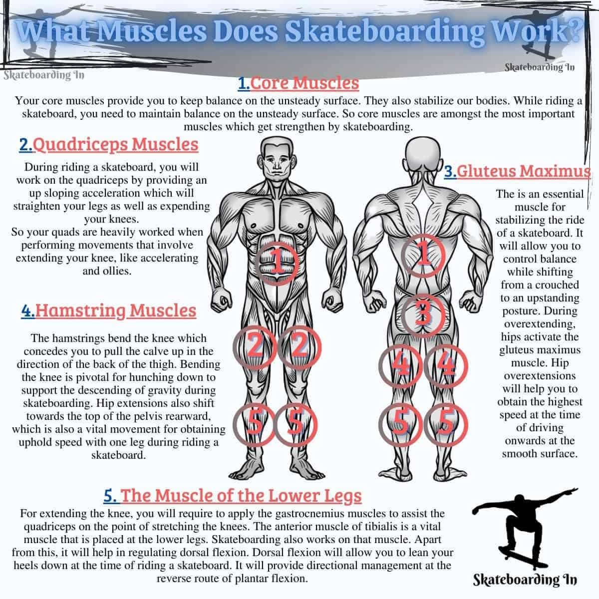 What Muscles Does Skateboarding Work